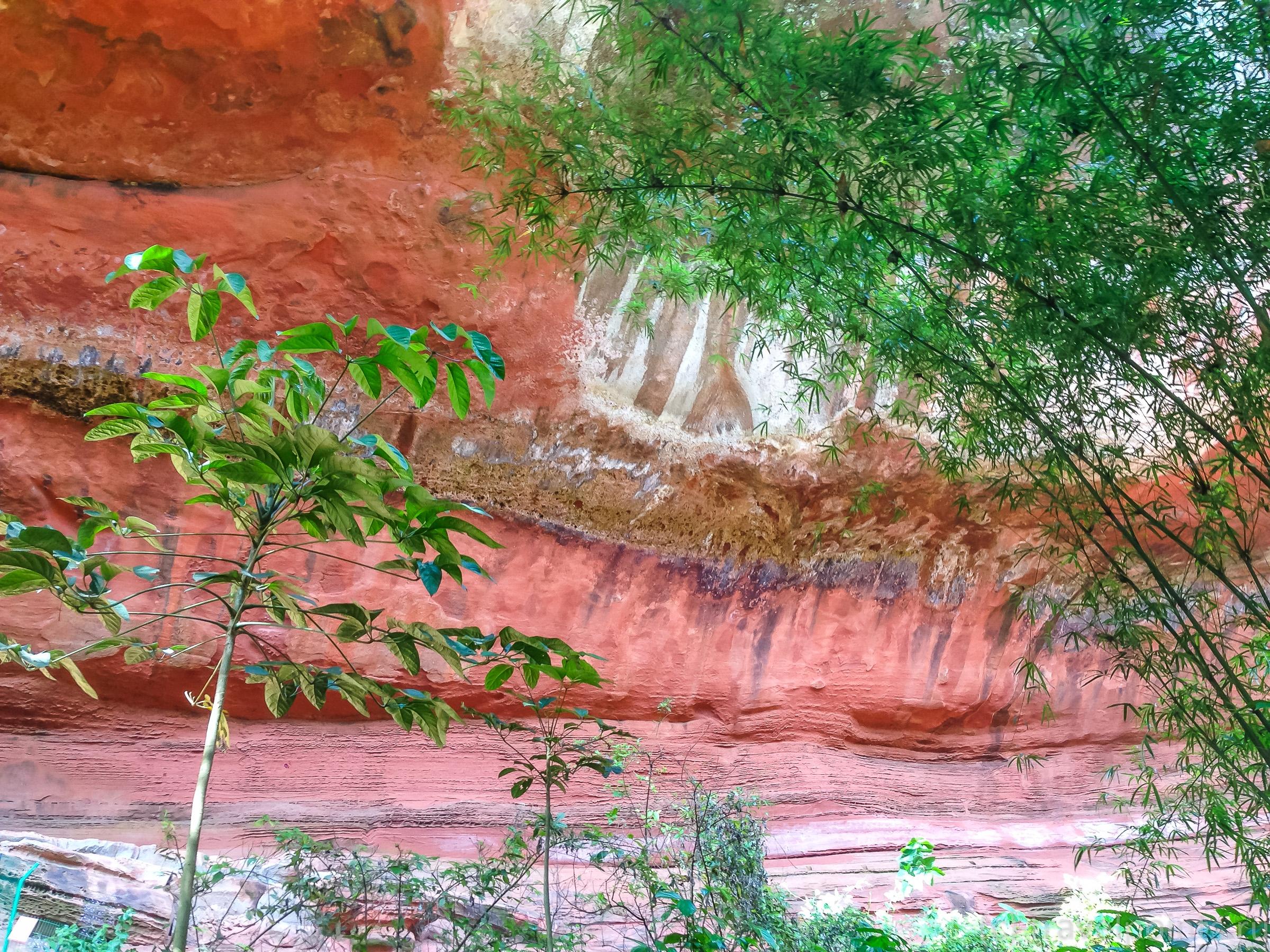 Сочетание красного и зеленого - главная фишка