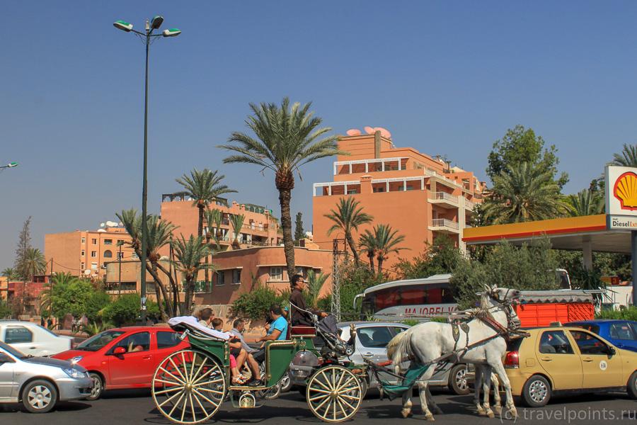 Лошадки для туристов