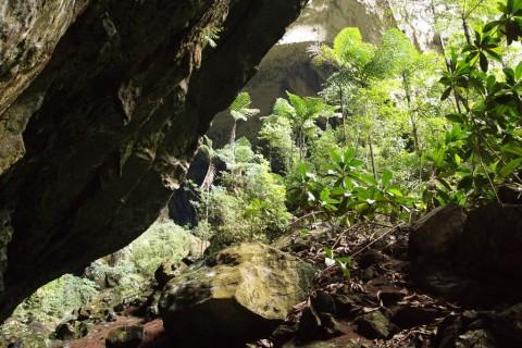 Борнео, вход в Оленью пещеру