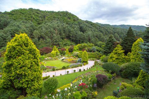 Сад утреннего спокойствия